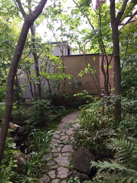 雑木林のようなお庭