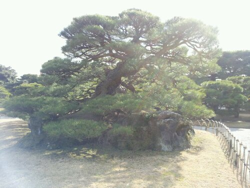 高松 栗林公園